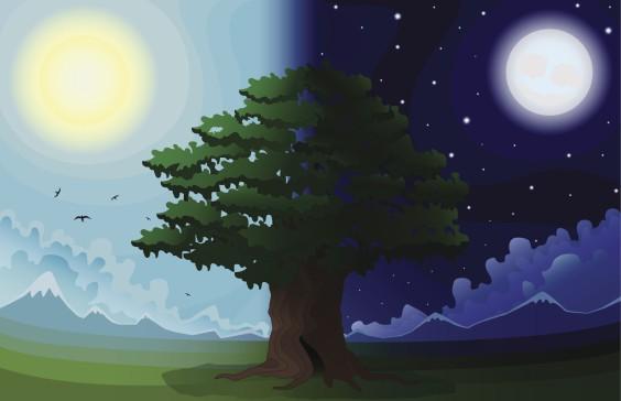 night_day_large